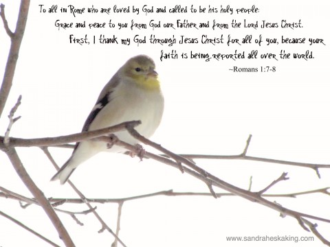 goldfinch, romans project, romans 1:7-8