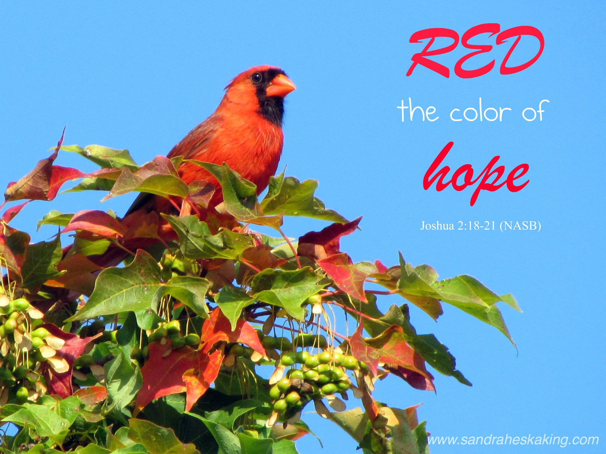red color of hope