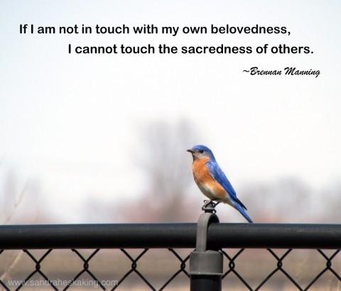 bluebird - compassionate