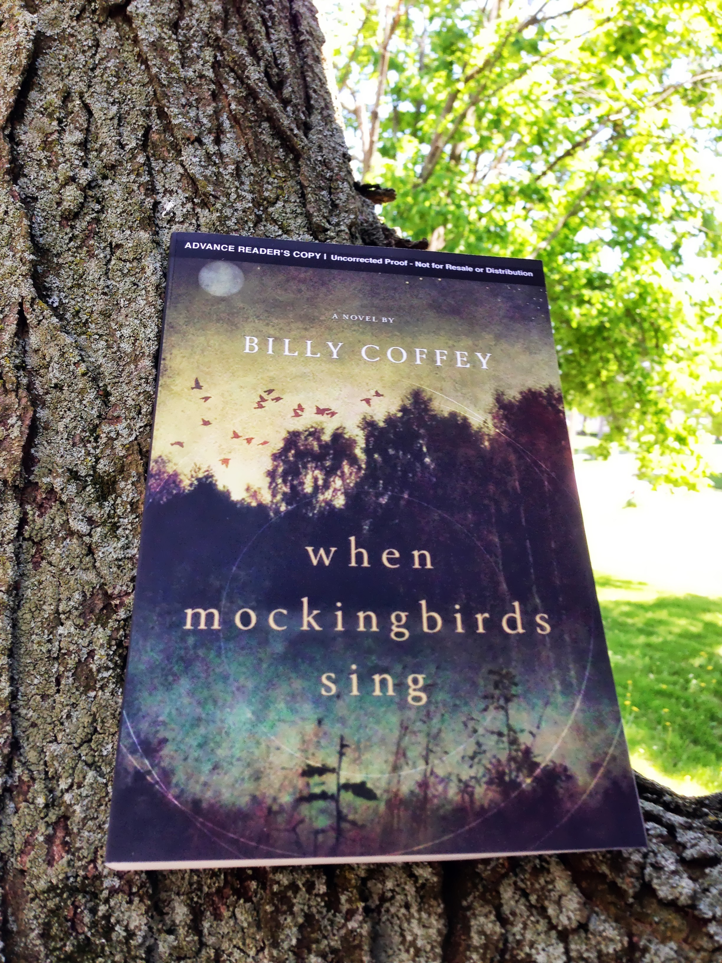 book review: when mockingbirds sing by billy coffey