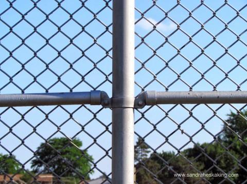 softball fence
