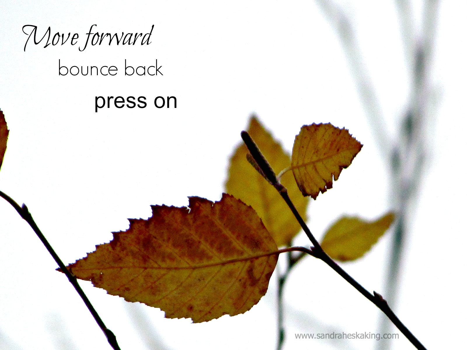 move forward, bounce back, and press on