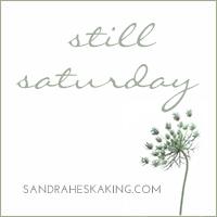Sandra Heska King - Still Saturday