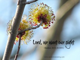 40 Words of Lent 2014: Day 5 (scripture sunday)