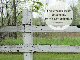 A Believable Witness by John Blase