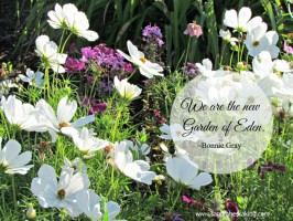 whitespace garden