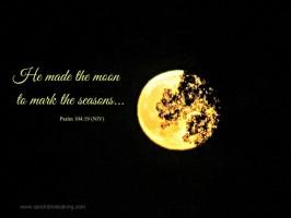 Scripture Sunday: Moon and Sun