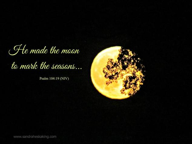 moon rise seasons - 090914-2