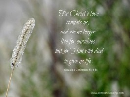 Scripture Sunday: Compelled