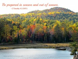 Scripture Sunday: Season