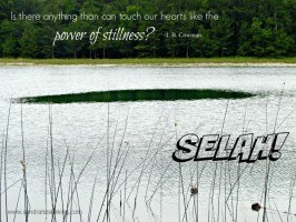 Still Saturday: Selah