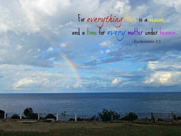 Haiti 2014 Rainbow