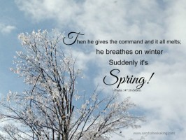One Word Less For Lent 2017 – Day 5 – Hope of Spring