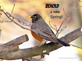 One Word Less For Lent 2015 – 14