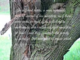 tree trunk - ancestors