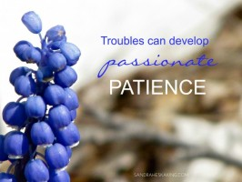 PASSIONATE PATIENCE