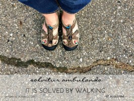 Becoming Mindful in Place: When You Don't Feel Like Walking