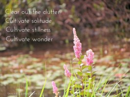 Still Saturday: Clear Out and Cultivate