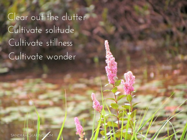 CLEAR OUT AND CULTIVATE