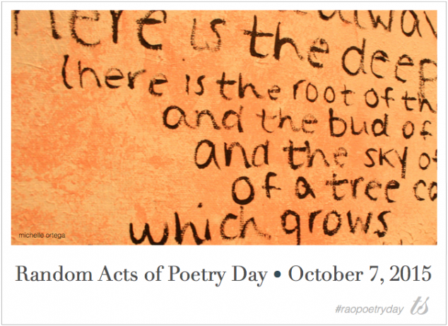 Random-Acts-of-Poetry-Orange-Wall