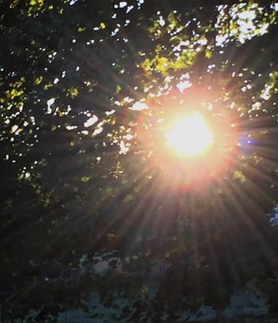last-sun-rise-michigan