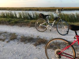 Dared: A 30-Mile Bike Ride and a Request