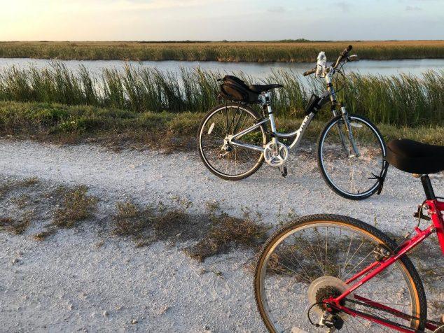 Dared: A 30-Mile Bike Ride and a Request